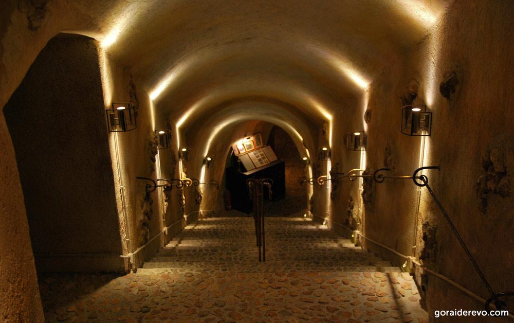 подземная экскурсия в музей вина