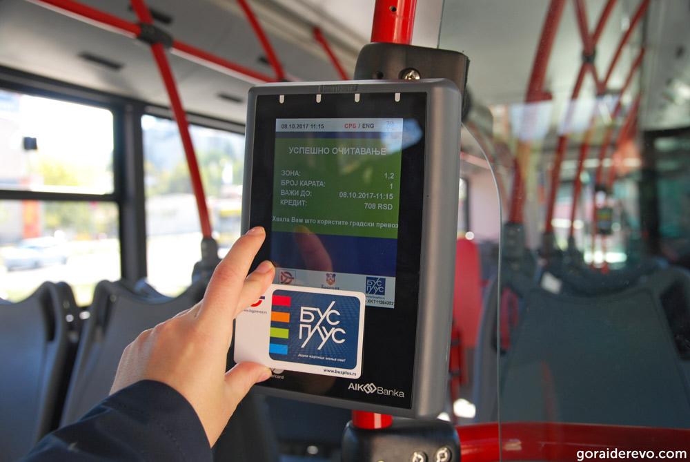 автобусы Белграда