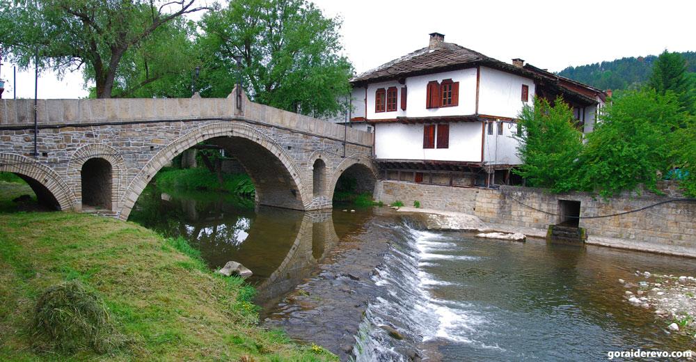 Река в Трявне