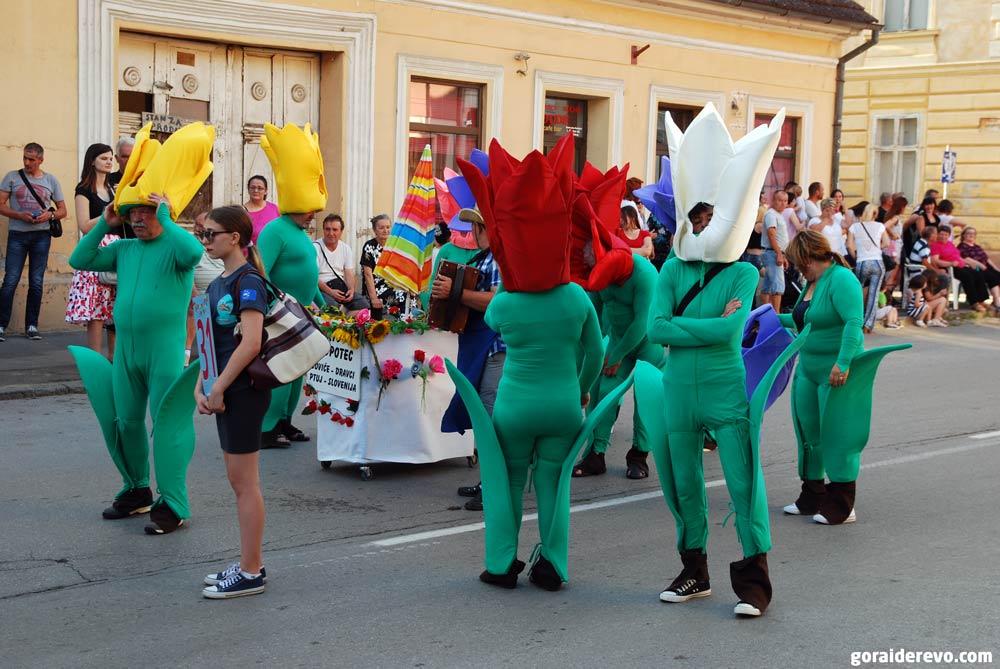 тюльпаны карнавал