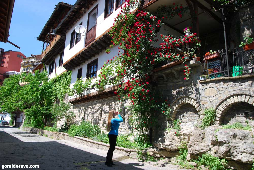 Болгарская роза в Велико-Тырново