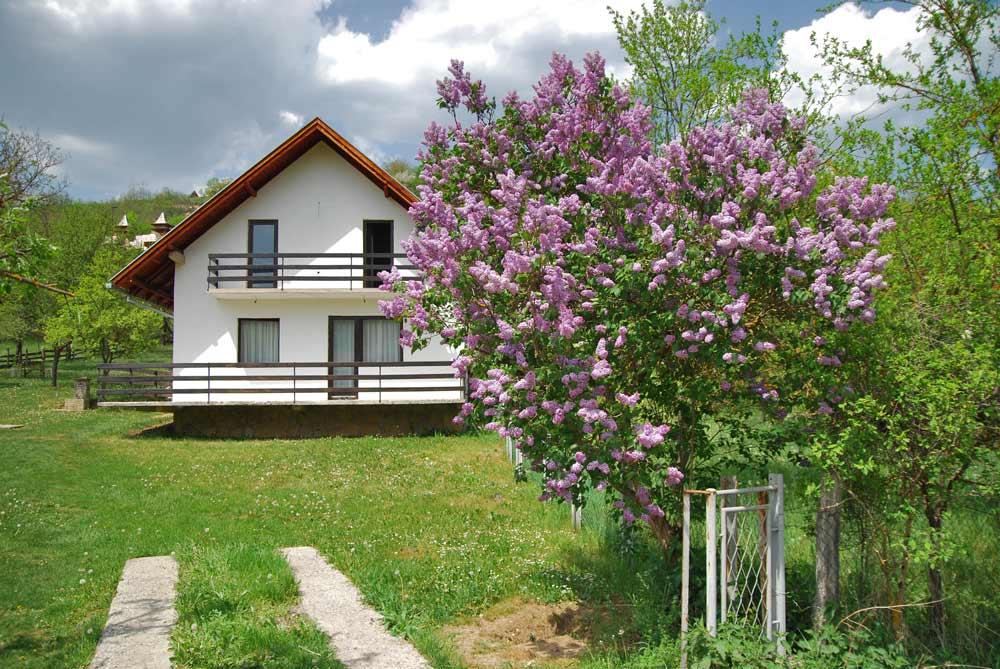 недорогая недвижимость Сербия