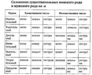 падежи в сербском языке