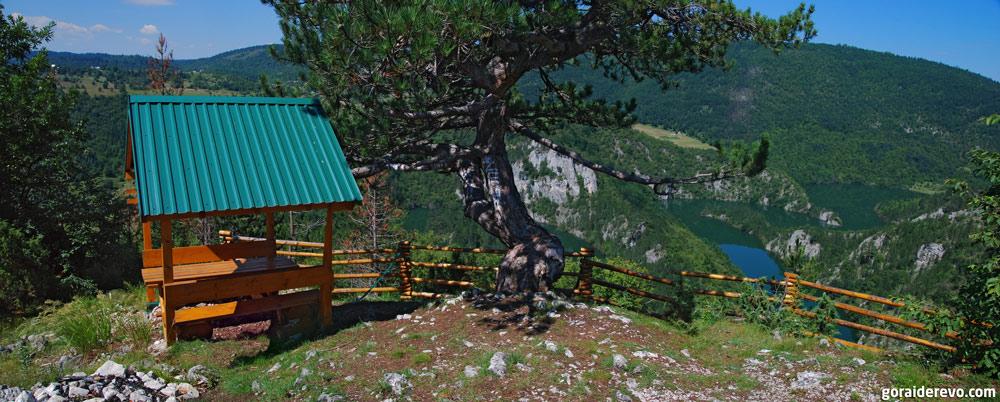 меандры реки Чехотины Черногория