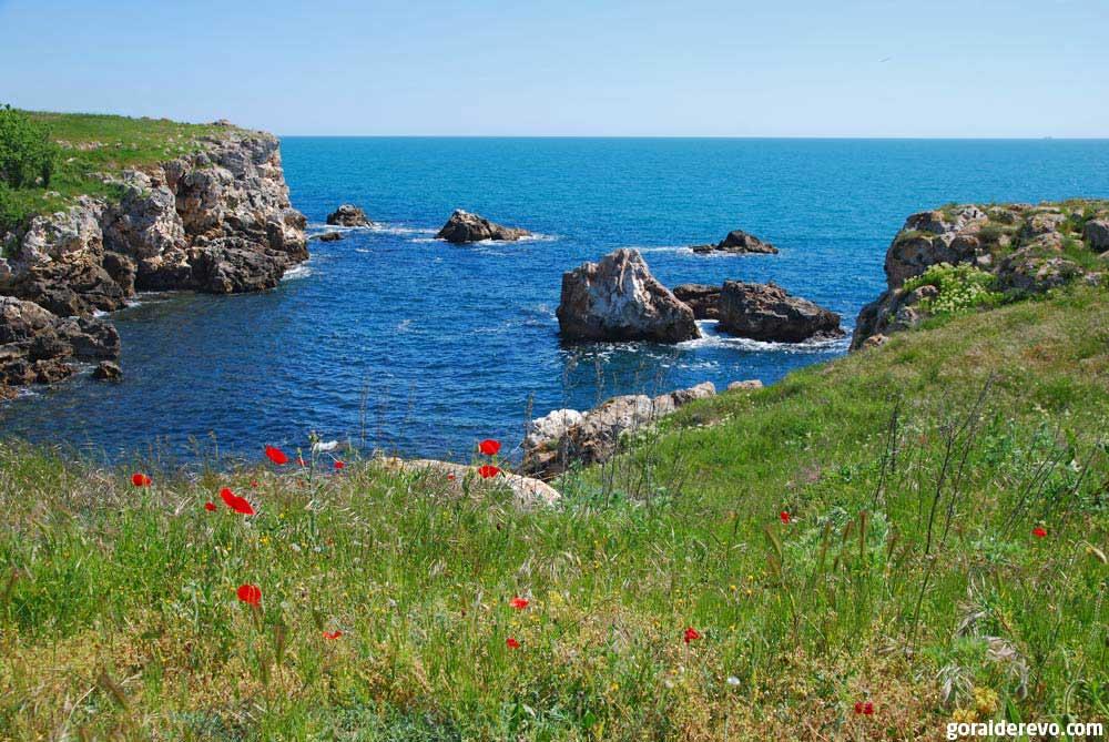 болгарское побережье