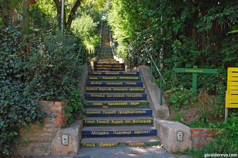лестница Калварице