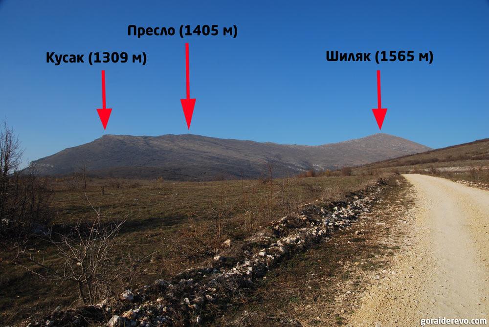 гора Ртань в Сербии