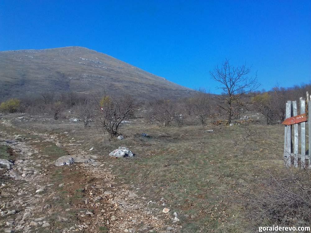 как выглядит гора Ртань в Сербии